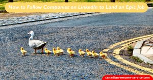 How to Follow Companies on LinkedIn to Land an Epic Job