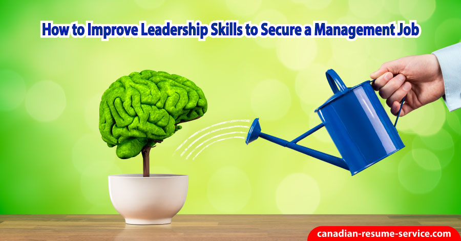How to Improve Leadership Skills to Secure a Management Job
